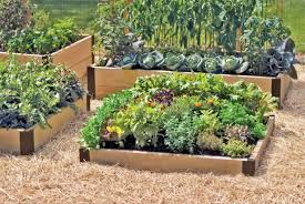 Gardens In Small Spaces Ideas by Raised Bed Vegetable Garden Design Garden Design Small Spaces