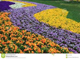 expo flower garden stock photo image 31205390