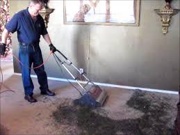 Hubbell Pfbrg3 by Counter Rotating Brush Carpet Machine Carpet Vidalondon