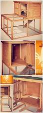 Rabbit Shack Hutch Rabbit Shack Double Rabbit Hutch Farm Pets Pinterest Rabbit