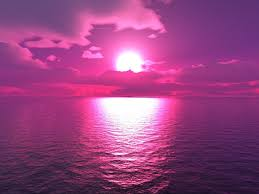 purple purple sunset wallpapers group 75