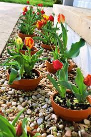 best 25 flower garden design ideas on pinterest perennial