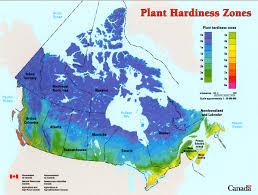 Growing Zone Map Usa by Nature U0027s Miracle Ginkgo Biloba Book 1 Vol 1 2 B M Begovic