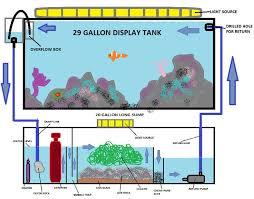 Aquascape Designs For Aquariums 12 Best Aquascaping Ideas Images On Pinterest Reef Aquarium