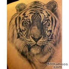 tiger designs ideas meanings images
