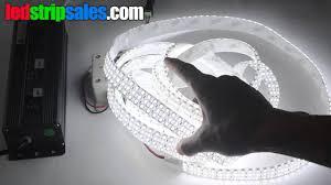 led daylight strip light triple row single color daylight white flexible led strip lights