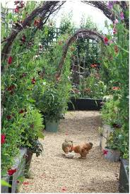 backyards gorgeous 15 trees for a wildlife friendly edible