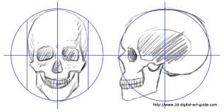 how to draw a skull on 2d digital guide gogh portraits