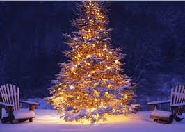 Outdoor Christmas Decorations With Music by 16 Best Christmas Trees In The Cold Cold Air Images On Pinterest