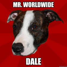 Pitbull Meme - mr worldwide dale vicious pitbull meme quickmeme