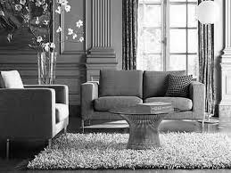 monochrome home decor amusing silver living room furniture ideas fabulous home