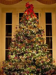 556 best trees images on merry