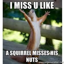 I Miss You Meme Funny - i miss you funny meme funny memes