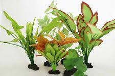 silk plants silk aquarium plants ebay