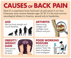stop lower back naturally and effectively terry nutrition