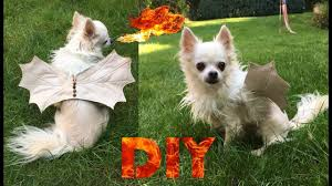 diy doggie dragon costume halloween costume for dogs youtube