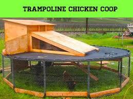 Best Backyard Trampolines 31 Best Trampoline Diy Images On Pinterest Trampoline Ideas