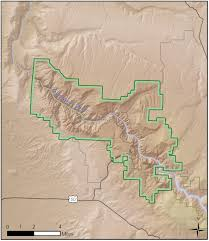 Co Surface Management Status Canon City Map Bureau Of Land by Black Canyon Of The Gunnison National Park