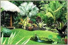 Tropical Backyard Ideas Tropical Backyard Landscape Backyard Landscape South Tropical