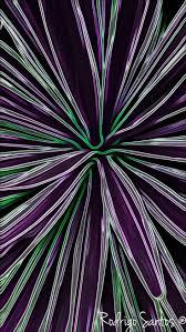 Yucca Wohnzimmer Die Besten 25 Yucca Gloriosa Ideen Auf Pinterest Große