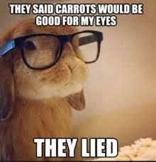 Silly Rabbit Meme - silly rabbit dr sonali patel associates inc facebook