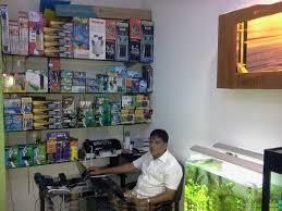aquarium professional in chennai aquarium design india