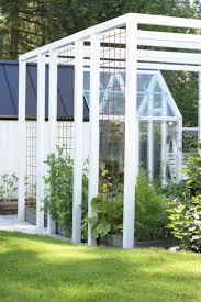 7 best trellis images on pinterest garden trellis privacy