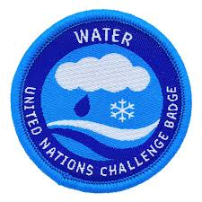 Challenge Water Wagggs Badges Water Un Challenge Badge Pack Of 10