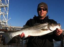 wilmington nc fishing charter plan your fishing trip early