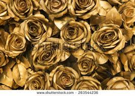 golden roses golden stock images royalty free images vectors