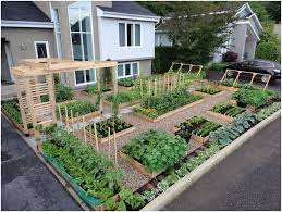 Best Vegetable Garden Layout Large Vegetable Garden Ideas Amazing Beginner Vegetable Garden
