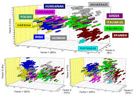 Genetic Maps Of Europe by Genetic Geographic And Linguistic Structure Of European