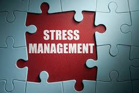 stress coping mechanisms elderly adults bamford maria