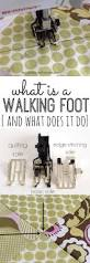 Cool Off With A Walk by Best 25 A Walk Ideas On Pinterest Cute Beagles Walk In Love