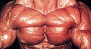 best inner chest exercises how to build inner pecs