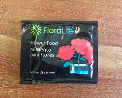how to revive dead flowers lifehacker australia