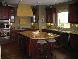 Neutral Kitchen Cabinet Colors - kitchen white kitchen cabinets with wood floors dark cabinets