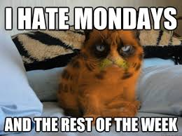 Mondays Meme - funny pictures about monday that help get you through monday