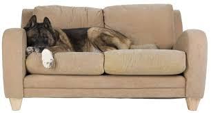 how to make sofa cushions hunker