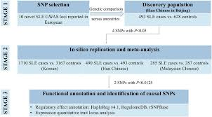 Sle Of Privacy Policy Statement by Evaluation Of 10 Sle Susceptibility Loci In Populations