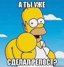 Homer Meme - create meme homer simpson the simpsons and you did a repost