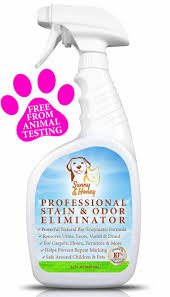 the 25 best pet odor eliminator ideas on pinterest pet odor