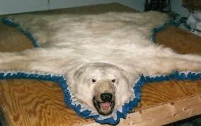 customer rugs