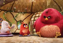 angry birds movie 3d film review listings