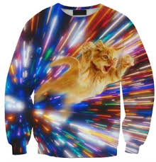 amazon oddities 3 3 16 flash cat sweatshirt mashup mom