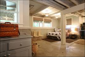 Fancy Ceilings by Interior Basement Ideas With Low Ceilings Throughout Awesome