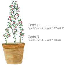 Climbing Plant Supports - spiral supports for climbing plants plantlive plant support co