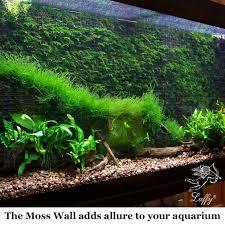 amazon com decorative luffy aquatic moss wall floor mesh kit