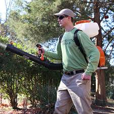 Mosquito Spray For Backyard by Mosquito U0026 Tick Control Services Mosquito Squad
