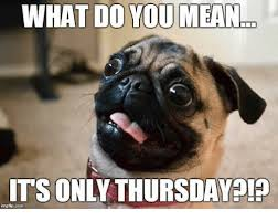 Thursday Meme Funny - thursday morning quotes memes and images happy thursday